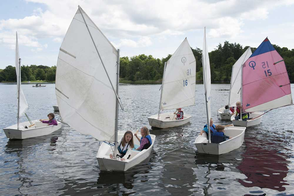 Barn som seglar i sex stycken optimistjollar. Fem vita segel och ett rosa och blått.